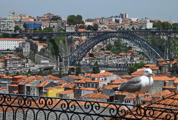Portos Altstadt, Weltkulturerbe, und Dom Luis Brücke