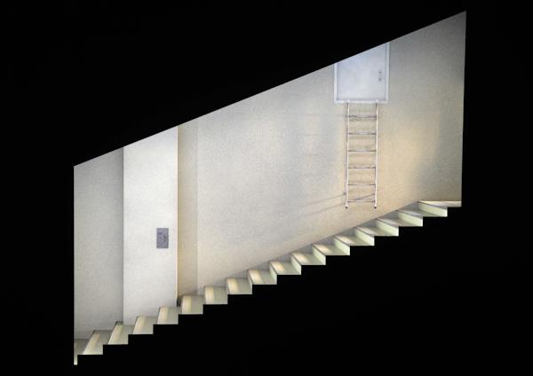 Wildente Treppe allein