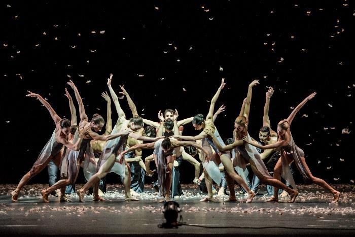 Murmuration_Ensemble (c) Wiener Staatsballett - Ashley Taylor