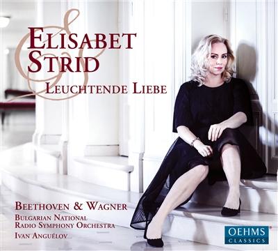 Elisabet Strid Leuchtende Liebe CD Cover