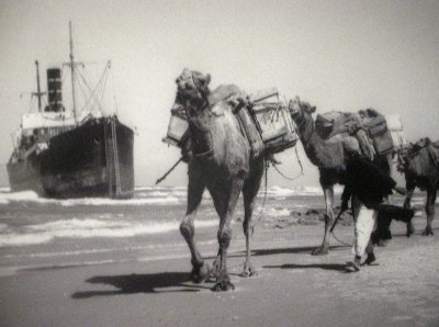 Israel Kamele vor Schiff~1